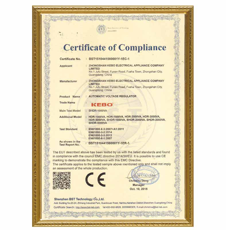 KEBO certificate electric stabilizer supplier for industry-14